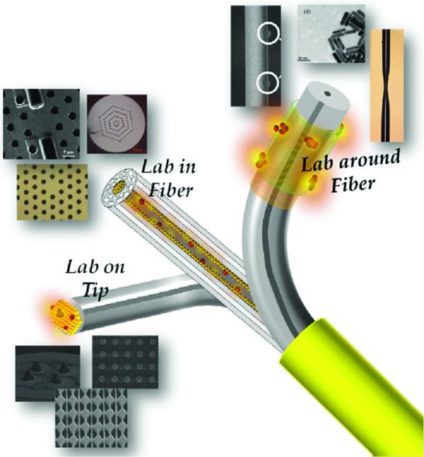 Lab in Fiber