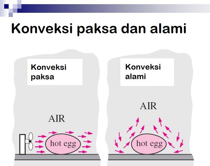 konveksi alami dan paksa