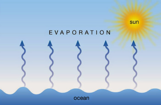 pengertian evaporasi